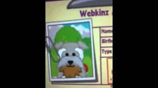 Adoption Of Webkinz Schnauzer