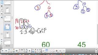 6th Grade Lesson 4 2 Greatest Common Factor