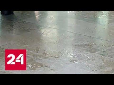 Американских туристов в Марселе облили кислотой - Россия 24