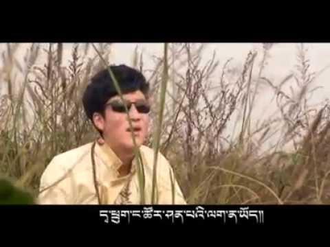 Tibetan New Song 2014 by Gonjo Gyurga. གོ་འཇོ། འགྱུར་དགའ།