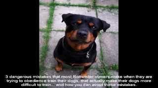 Cesar Millan Rottweiler Training Guide