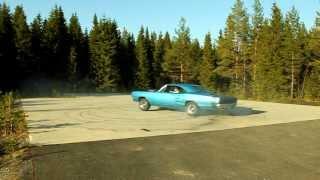 Dodge Super Bee 426 HEMI -69
