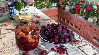 Сливовый компот на зиму ( очень простой рецепт )