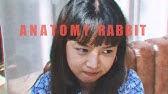ANATOMY RABBIT - ธรรมดาแสนพิเศษ | Extraordinary (Official Audio)