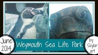 Weymouth sea life park Thumbnail
