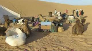 sahara desert zagora,camel trekking ,bivouac,nights in the desert,4x4 tours