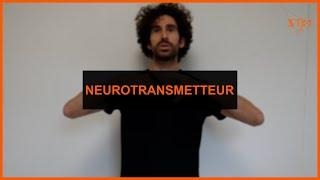 Santé - Neurotransmetteur