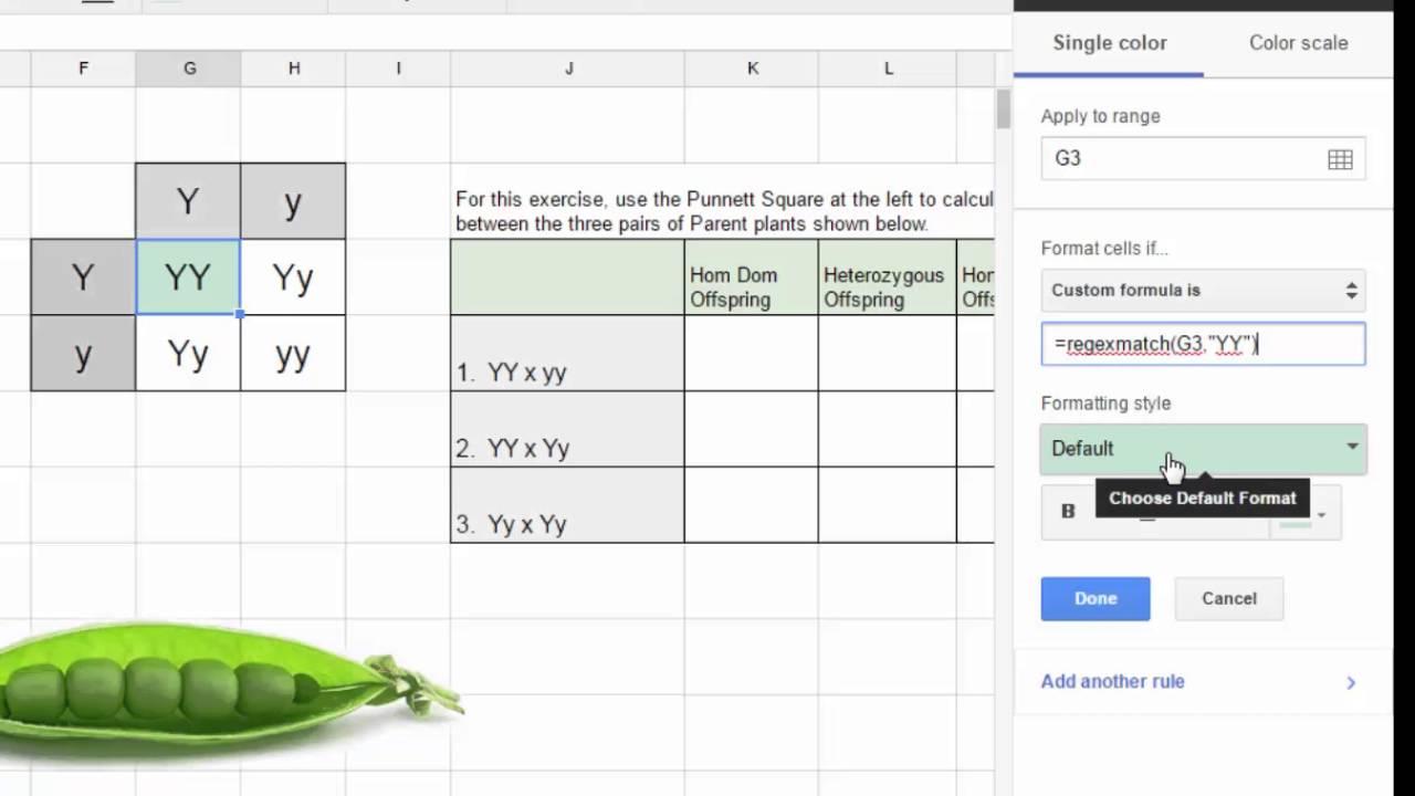 google sheets  u0026 punnett squares