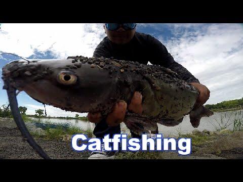 Catfishing At Isleta Lakes For Derby
