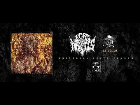 LORD MANTIS - Damocles Falls (official audio)