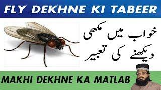 Video khawab ki tabeer in hindi urdu | khawab ki tabeer in urdu | khwab mein makhi dekhna download MP3, 3GP, MP4, WEBM, AVI, FLV April 2018
