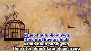 Touly Vangkhue - Nruab Hnub Phoojywg (Karaoke)