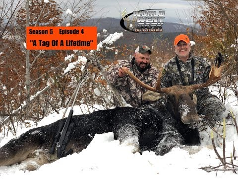 Moose Hunting In New Hampshire /w Northern New England Outfitters