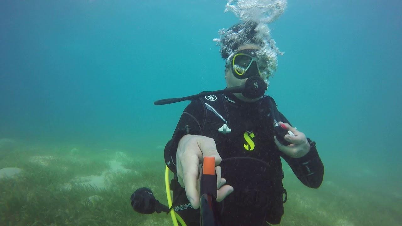 Whale Shark Encounter & Scuba Diving In Tan-Awan Oslob