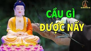 Phật Dạy 1 Lần Không Nghe Uổng 1 Đời Nghe Để Biết VÌ SAO BẠN MÃI NGHÈO