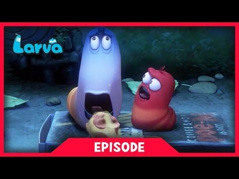LARVA - HAM | 2017 Best Cartoon Movie | Cartoons For Children | 라바 | LARVA Official