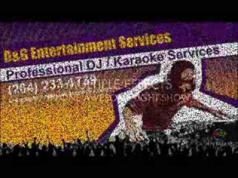 D&G Ent Services Fun Factor LED DJ Lite