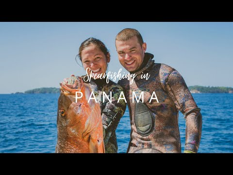 Spearfishing In Panama