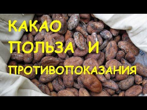 Какао бобы польза и противопоказания