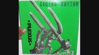 Plexus - Cactus rhythm (1991 Manu mix)