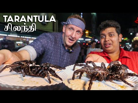 Spider And Scorpion - Extreme Foods - Feat. Best Ever Food Review Show