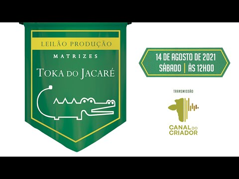 LOTE 27