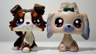 All my LPS customs