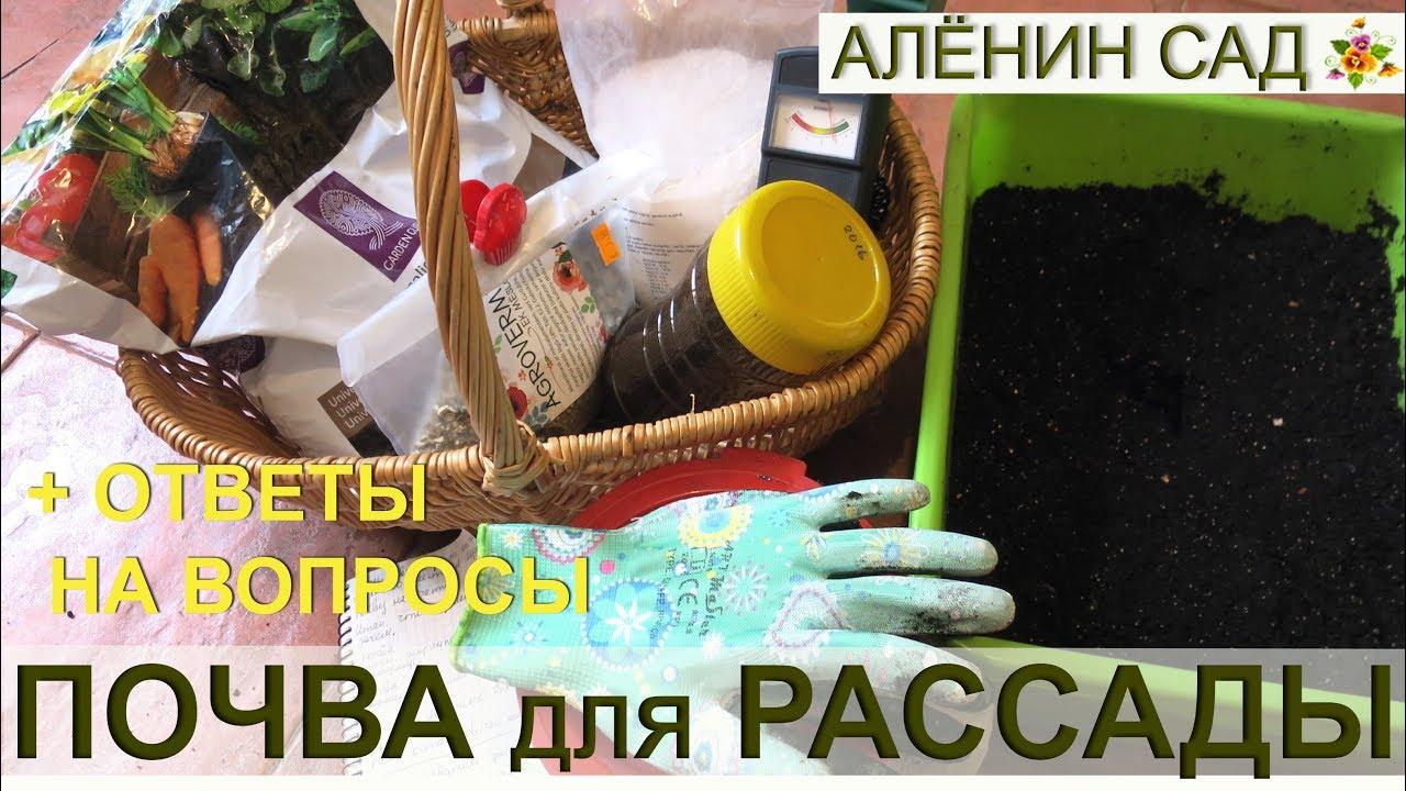 ПОЧВА для РАССАДЫ / Какая должна быть / Ответы на вопросы зрителей / Как я делаю почву для рассады