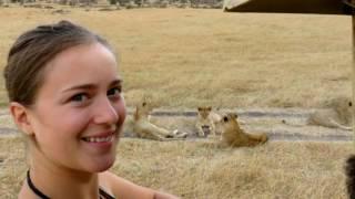 KENYA Safari Maasai Mara 2016 - HD recommended GOPRO
