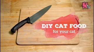 DIY Cat Food