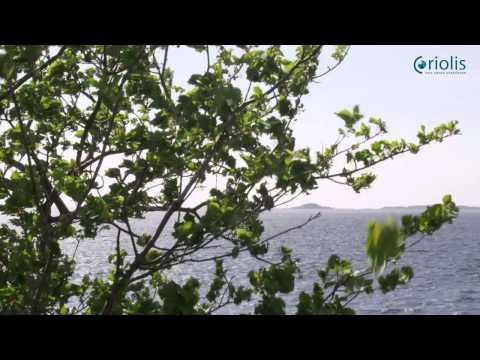 ocean power and renewable energy - Coriolis AS