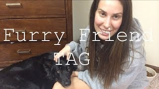 Furry Friend Tag : Meet Baylee Thumbnail