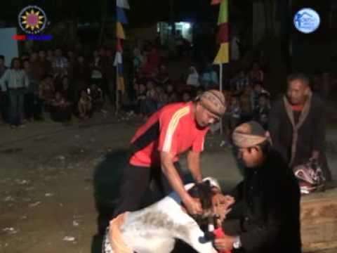 Sampak II Panca Krida Budaya sanggar Oemah Bejo live Gumelar