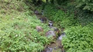 Rivière à Alliat en Ariège