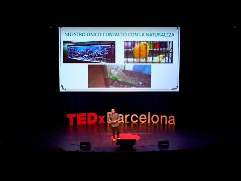 Ignacio Solano  TEDxBarcelona  Ciudades con el corazón verde