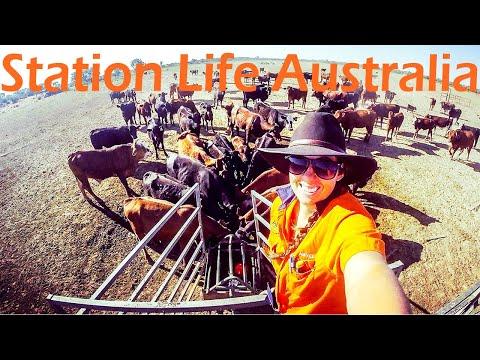 Station Life - Episode 26