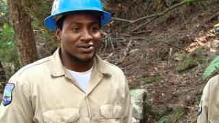 Bootjack Trail Restoration
