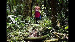 Encuentro en el Bosque Medicinal