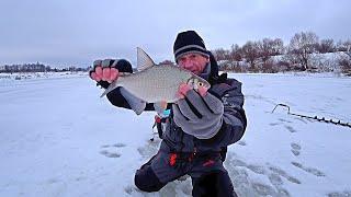 Нашёл рыбу в городе Зимняя рыбалка на ОКЕ январь 2021