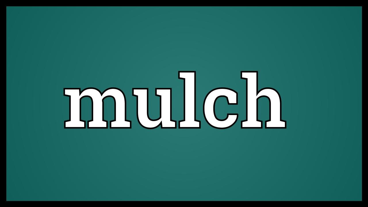 Mulch Meaning Youtube