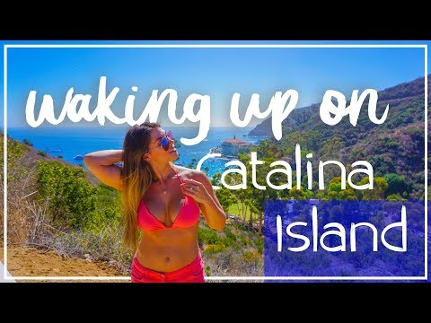 Things to do in Catalina Island 4K | Weekend Trip Avalon on Catalina Island | Hamilton Cove Villas