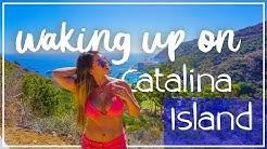 Things to do in Catalina Island 4K | Weekend Trip Avalon on Catalina Island | Hamilton Cove Villas