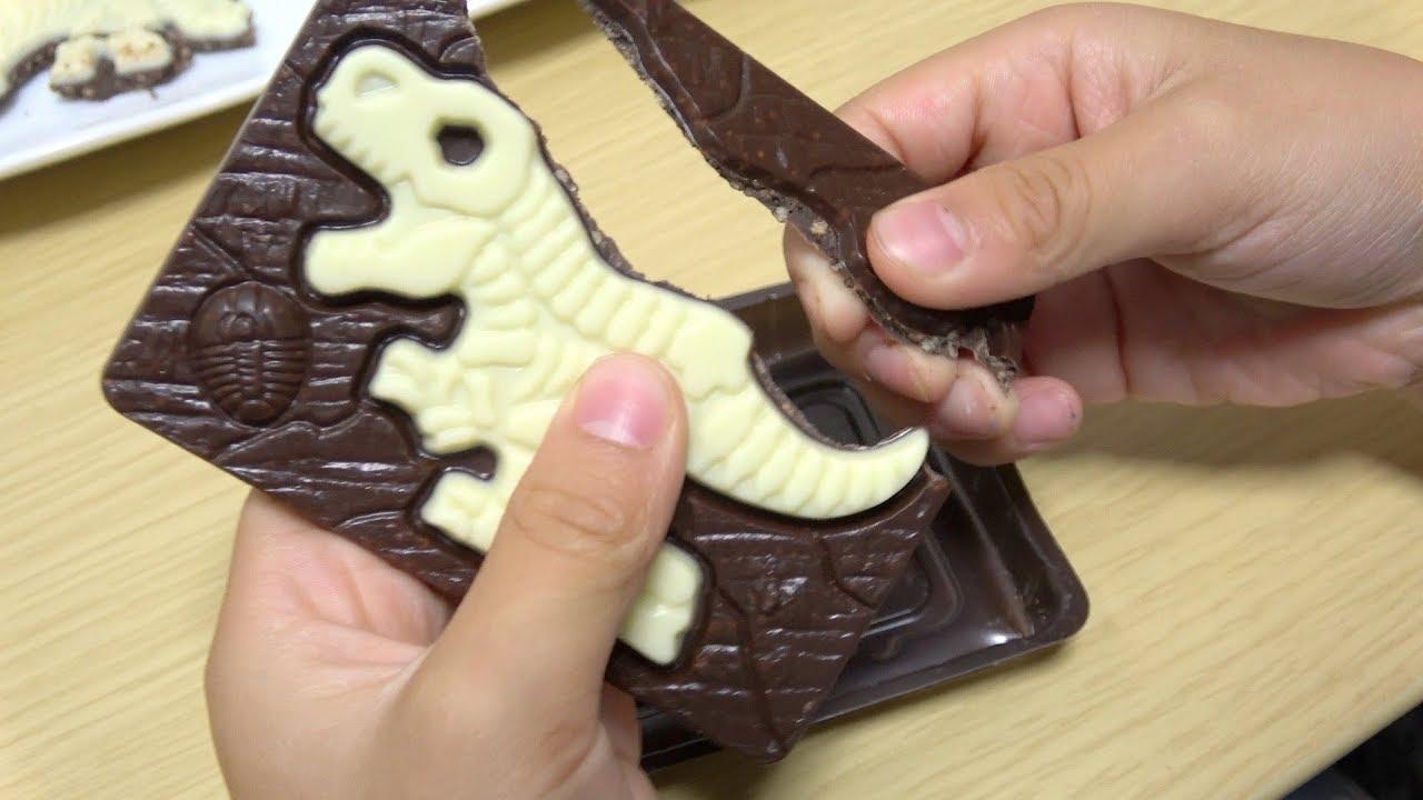 発掘 恐竜 キャラパキ