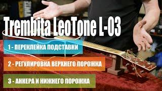 Ремонт и отстройка Trembita LeoTone L-03