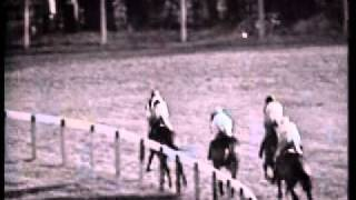 1964 Cheltenham Gold Cup Arkle and Mill House.avi