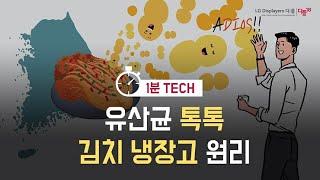 유산균 톡톡, 김치 냉장고 원리!