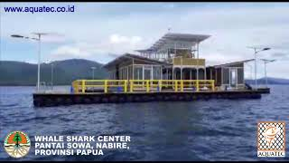 whale shark center