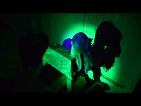Frightland: A Paranormal Investigation  (A Ghost Hunt On A Real Haunted Property)