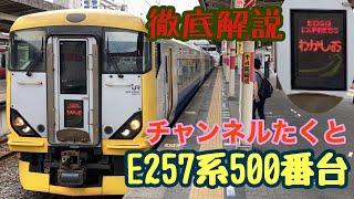 【特急列車】E257系500番台徹底解説!