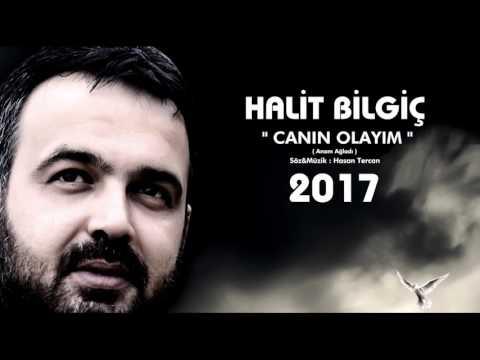 HALİT BİLGİÇ ( CANIN OLAYIM ) 2017 YENİ